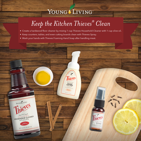 A Toxic Free Home Thieves Household Cleaner Living