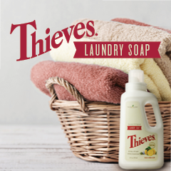 Tile_thieves-laundry-soap