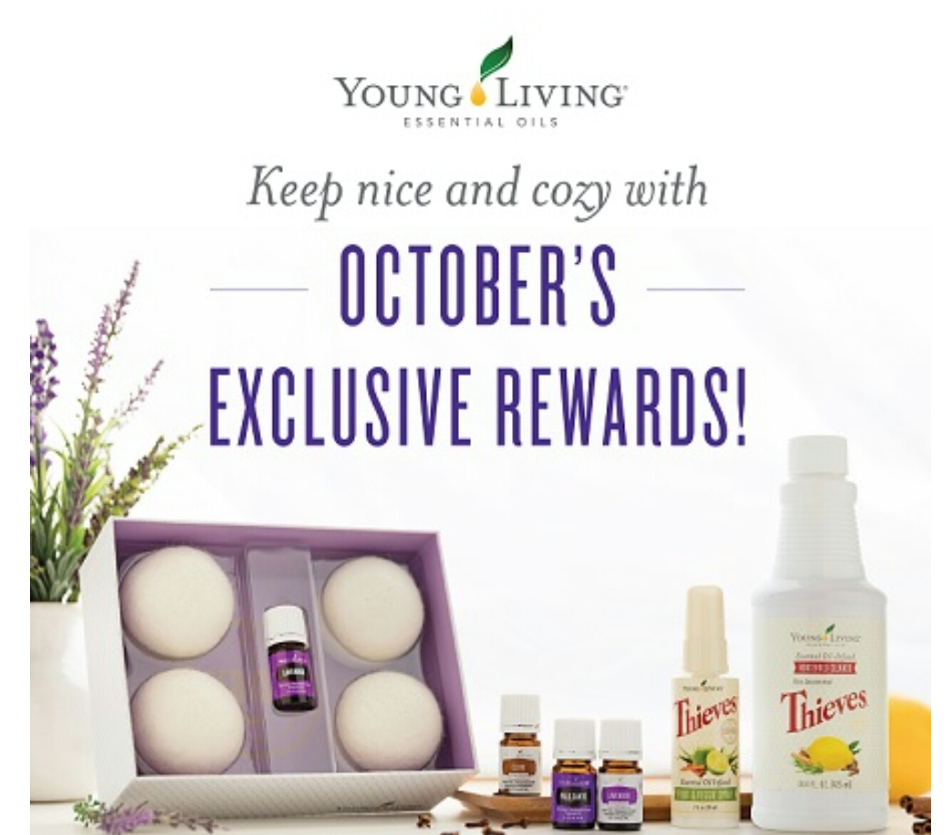 Charmant ... A Warm Home, And An Incredible Business That Empowers You To Share The  Power Of Natureu0027s Gifts. Octoberu0027s PV Promotion Offers Young Living ...