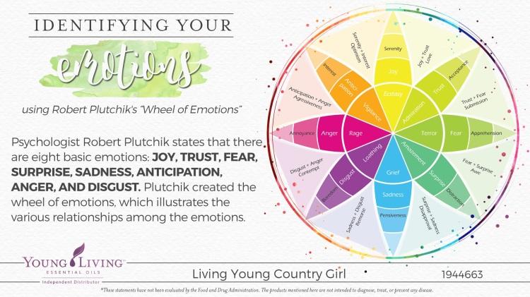 06-Identifying-emotions-1