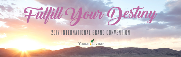 convention2017yl